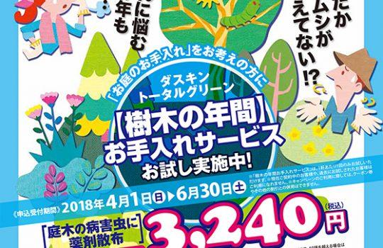 樹木の年間お手入れサービス お試しキャンペーン!