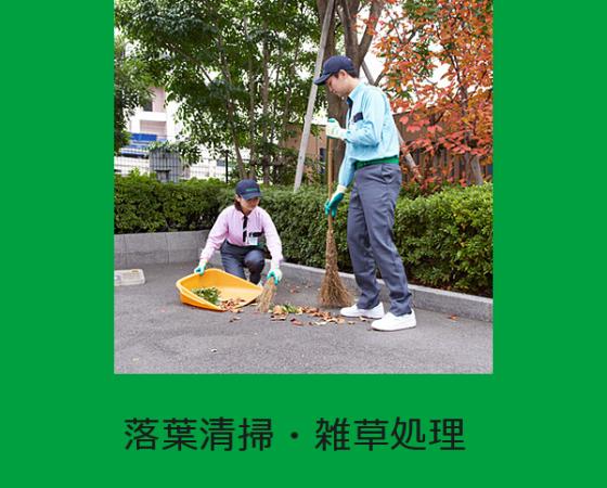 落葉清掃・雑草処理